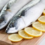 Eating Oily Fish Such As Mackerel Could Reduce Stroke Risk