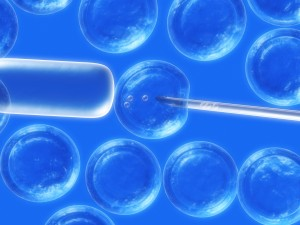 New Developments In Stem Cell Therapy Could Help Stroke Victims